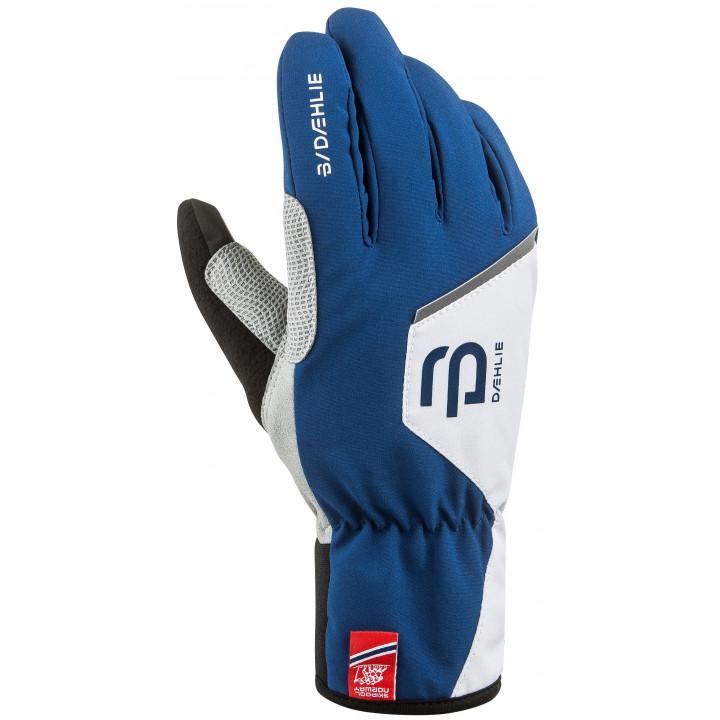 Перчатки Bjorn Daehlie Glove Track 331021 25300 синий