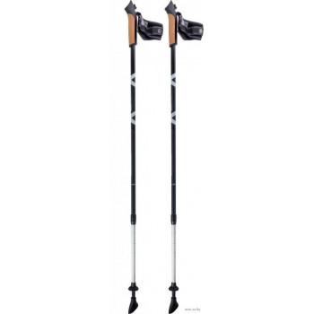 Палки для ск.ходьбы Ecos AQD-B 020 gray